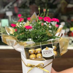 Mini rosa plantada com Ferrrero Rocher